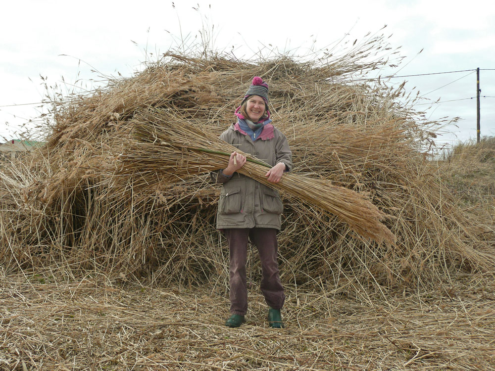 Kathy McVittie with cut reed