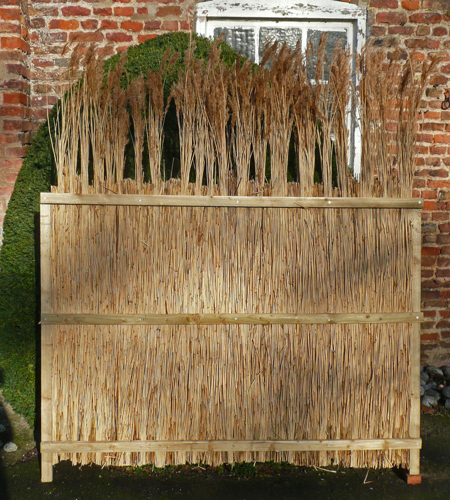 Richard's reed fence panel