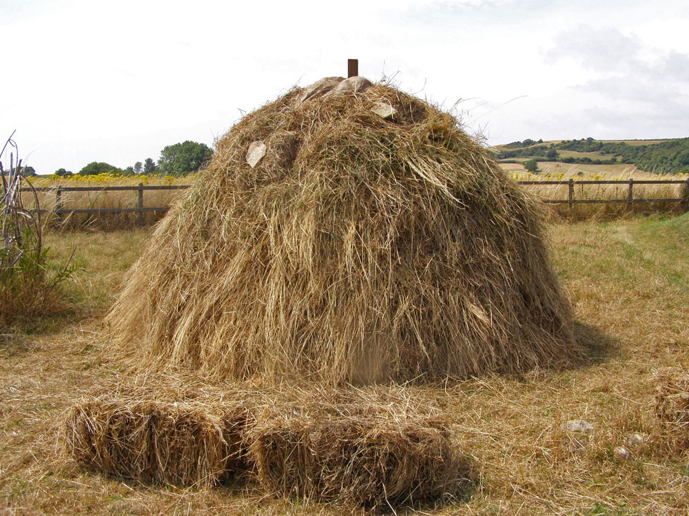 Roman-Hay